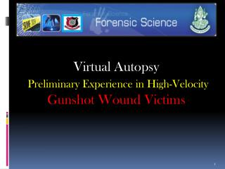 Virtual Autopsy  Preliminary Experience in High-Velocity  Gunshot Wound Victims