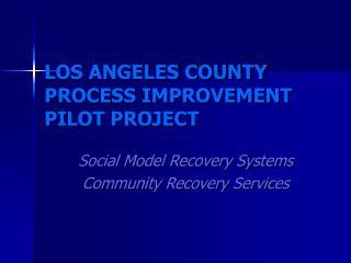 LOS ANGELES COUNTY PROCESS IMPROVEMENT PILOT PROJECT