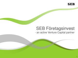 SEB F retagsinvest  - an active Venture Capital partner