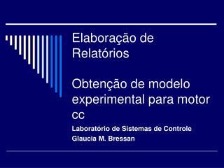 Elabora  o de Relat rios  Obten  o de modelo experimental para motor cc