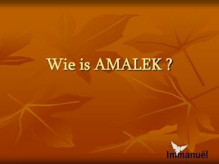Wie is AMALEK
