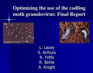 Optimizing the use of the codling moth granulovirus: Final Report