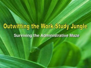 Surviving the Administrative Maze