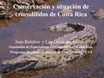 Conservaci n y situaci n de crocod lidos de Costa Rica