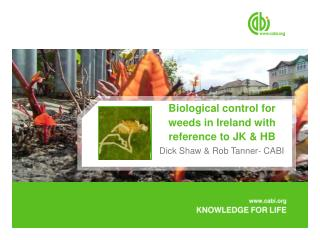 Biological control for weeds in Ireland with reference to JK  HB