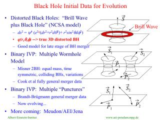 Black Hole Initial Data for Evolution