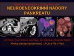 N dory pankreatu a  lucov ch cest: NEUROENDOKRINN  N DORY PANKREATU