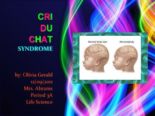CRI     DU       CHAT SYNDROME    by: Olivia Gerald                12o92011 Mrs. Abrams Period 3A Life Science