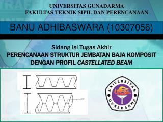 BANU ADHIBASWARA 10307056