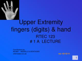 Upper Extremity fingers digits  hand