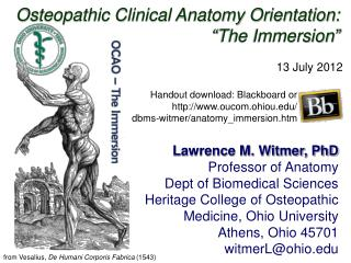 Osteopathic Clinical Anatomy Orientation:  The Immersion