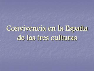 Convivencia en la Espa a  de las tres culturas