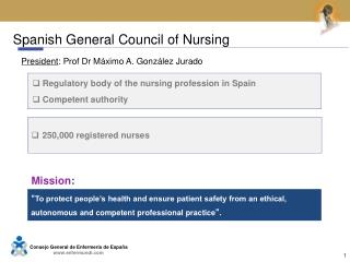 Spanish General Council of Nursing