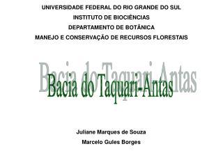 UNIVERSIDADE FEDERAL DO RIO GRANDE DO SUL INSTITUTO DE BIOCI NCIAS DEPARTAMENTO DE BOT NICA MANEJO E CONSERVA  O DE RECU