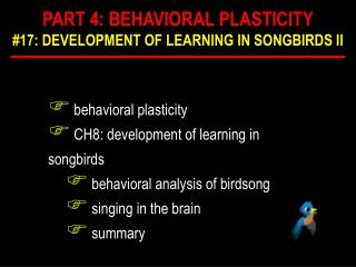 Behavioral plasticity  CH8: development of learning in songbirds  behavioral analysis of birdsong  singing in the brain