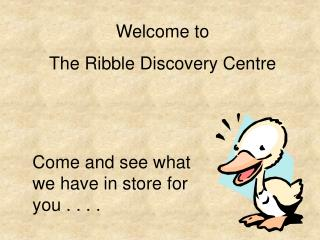 Welcome to The Ribble Discovery Centre