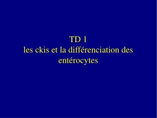 TD 1 les ckis et la diff renciation des ent rocytes
