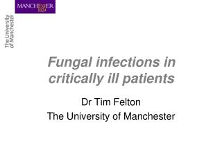 Fungal infections in critically ill patients