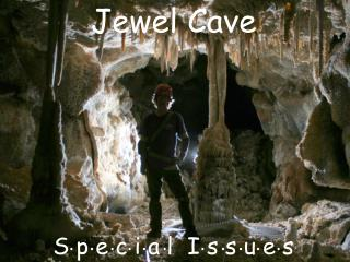 Jewel Cave Special Issues