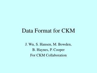 Data Format for CKM