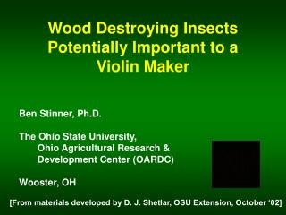 Wood Destroying Insects Potentially Important to a Violin Maker