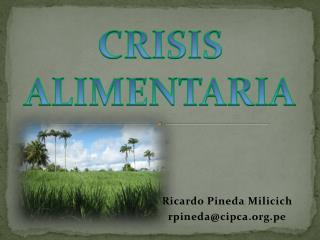Ricardo Pineda Milicich rpinedacipca.pe