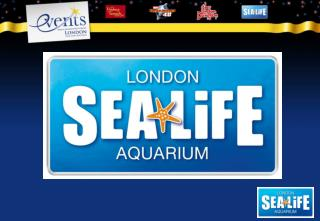 Sea Life London Aquarium  Located on South Bank next to the London Eye Seated events from 50-180 guests Parties for up t