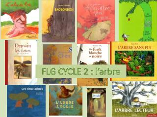 FLG CYCLE 2 : l arbre