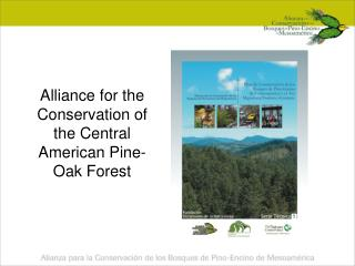 Alliance for the Conservation of the Central American Pine-Oak Forest
