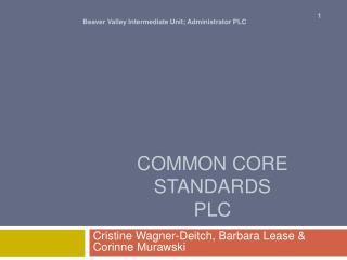 Common Core Standards PLC