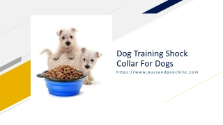 Dog Training Shock Collar For Dogs