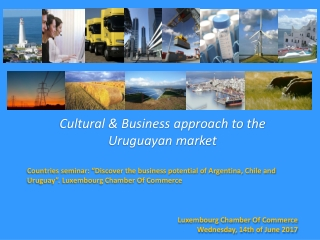 Cultural & Business approach to the Uruguayan market
