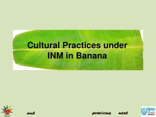 Cultural Practices under INM in Banana