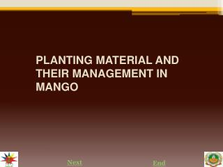 PLANTING MATERIAL AND THEIR MANAGEMENT IN MANGO
