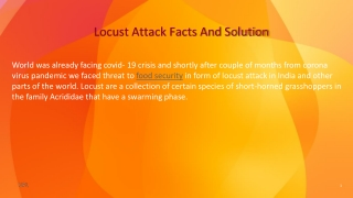 Locust Attack Facts And Solution