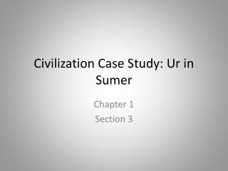 Civilization Case Study: Ur in Sumer