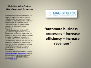 Custom Software Development - MAG Studios