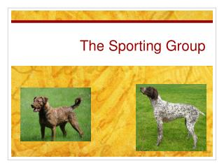 The Sporting Group