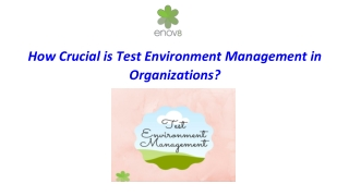 How Crucial is the Test Environment Management in Organizations?