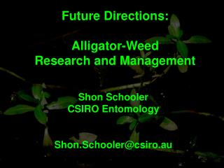 Future Directions: Alligator-Weed Research and Management