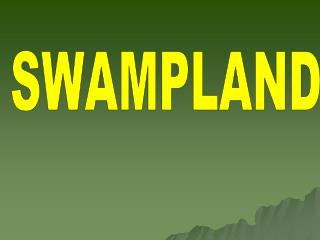 SWAMPLAND