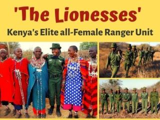 'The Lionesses': Kenya's elite all-female ranger unit
