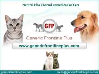 Natural Flea Control Remedies For Cats
