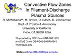 Convective Flow Zones in Filament-Discharge Plasma Sources