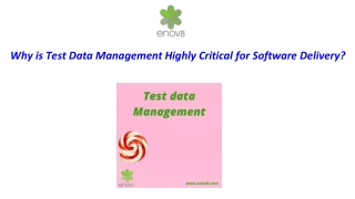 Why is Test Data Management Highly Critical for Software Delivery?