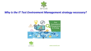 Why is the IT Test Environment Management Strategy Necessary?