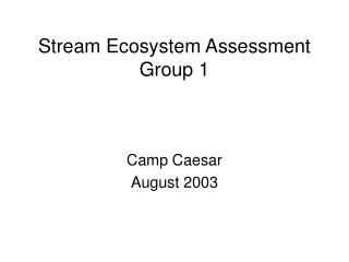 Stream Ecosystem Assessment Group 1