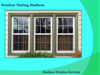 Best Window Tinting Service in Madison, WI