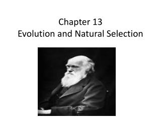 Chapter 13 Evolution and Natural Selection