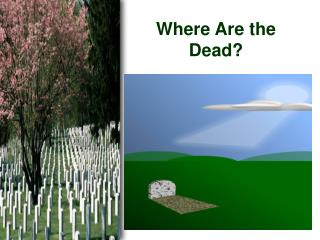 Where Are the Dead